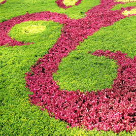 picobello garten, Gartenarbeit ideen